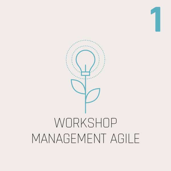 WORKSHOP MANAGEMENT AGILE