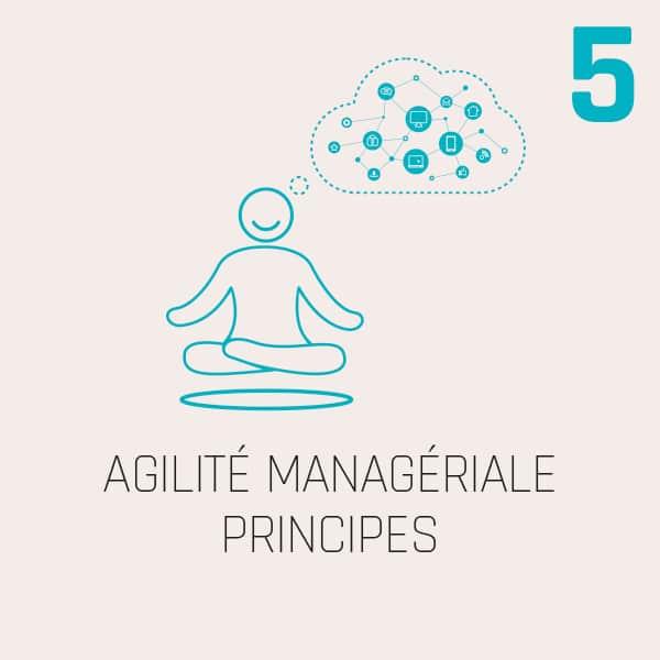 AGILITÉ MANAGÉRIALE PRINCIPES